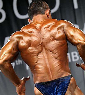 Back Training - Creating a Christmas Tree  Nothing to do with getting  festive, but everything to do with getting lean for a