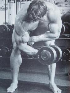 Arnold-standing-concentration-curls