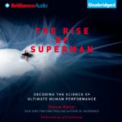 rise if superman audible