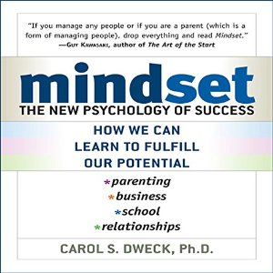 mindset dweck blog review
